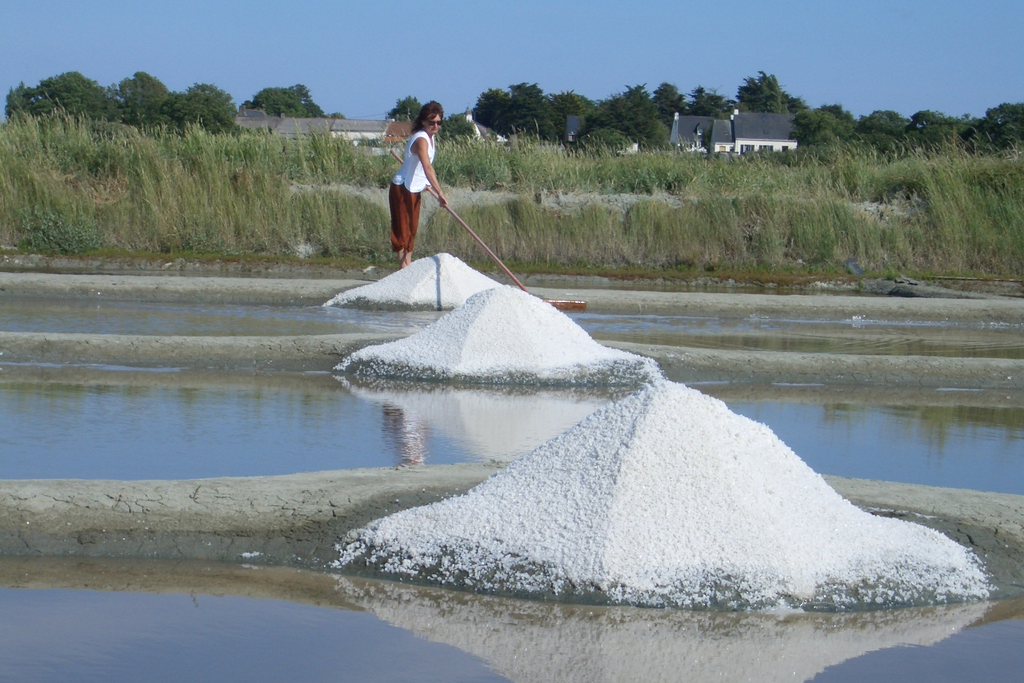 塩 海水塩 フランス ゲランド 細粒塩 一番塩